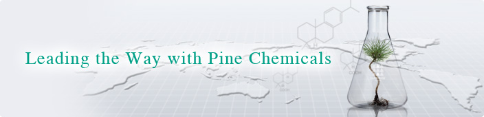 Leading the Way with Pine Chemicals